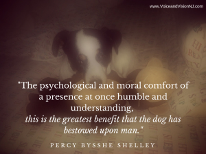 The psychological and moral comfort of a